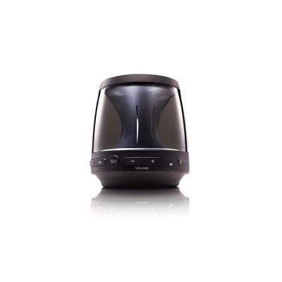 Portable Bluetooth Speaker PH1