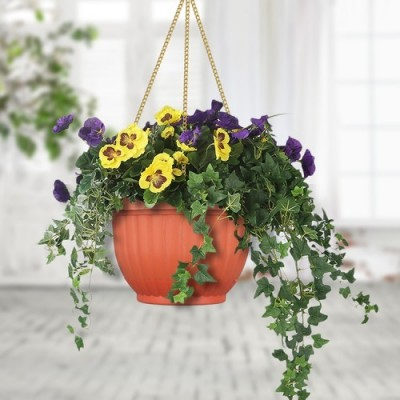 Ceiling Hanging Flower Pots (Self Watering)