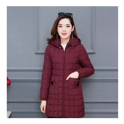 Latest Down Jacket For Women