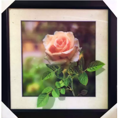 New lenticular picture 5D frame picture adjustable picture frame of Rose Home and Office Decor
